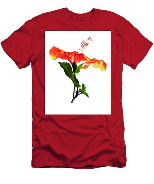 Art Orange Men's T-Shirt (Athletic Fit)