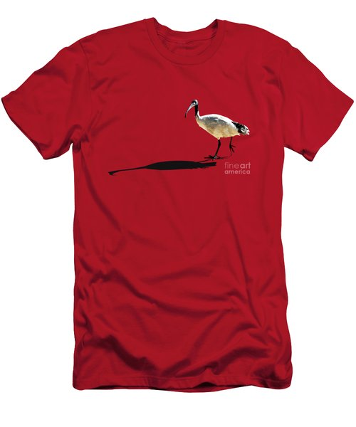 Bribie Island Ibis Men's T-Shirt (Slim Fit) by Susan Vineyard