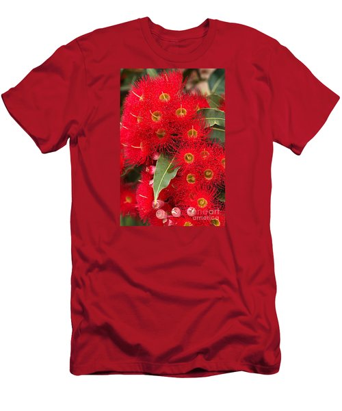 Australian Red Eucalyptus Flowers Men's T-Shirt (Slim Fit) by Joy Watson