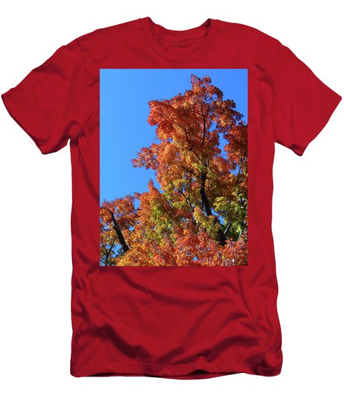 Autumn Foliage Men's T-Shirt (Athletic Fit)