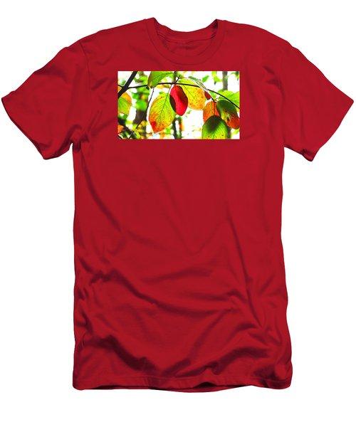 Autumn Leaves At Lake Padden Men's T-Shirt (Slim Fit) by Karen Molenaar Terrell