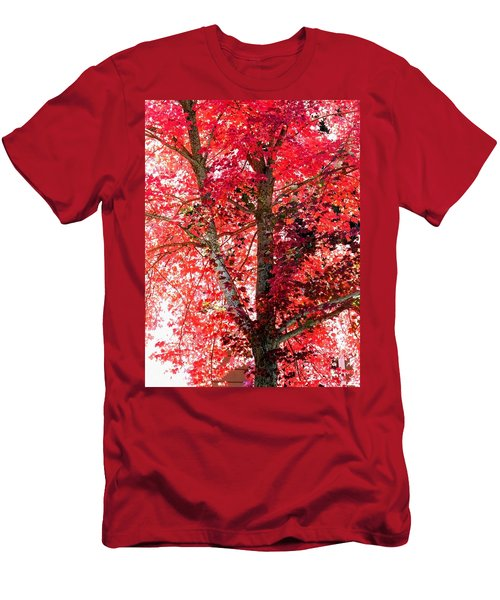 Autumn Tree Men's T-Shirt (Slim Fit) by Michael Dohnalek