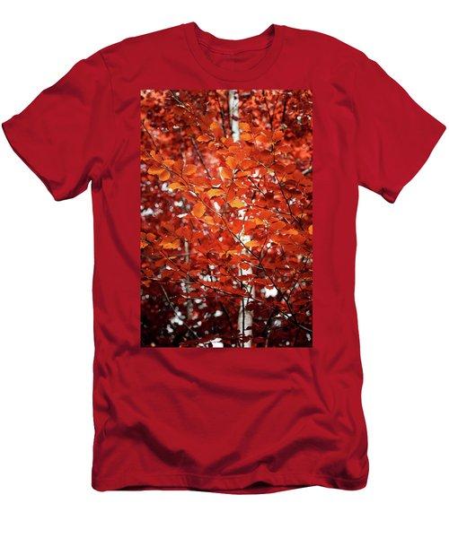 Autumn Triumph Men's T-Shirt (Athletic Fit)
