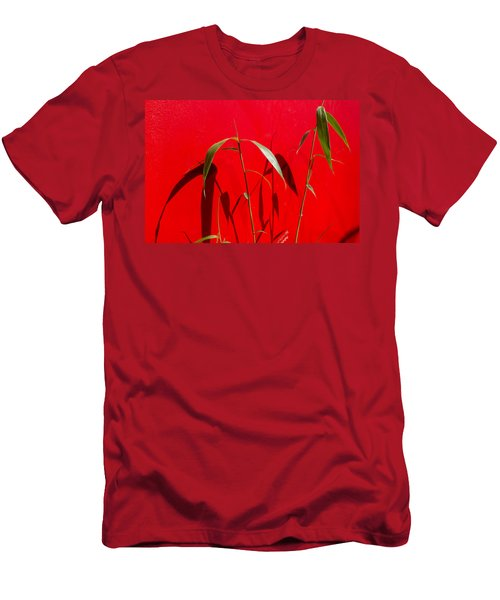 Bamboo Against Red Wall Men's T-Shirt (Athletic Fit)