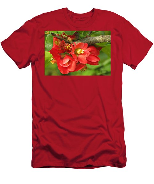 Beauty In The Branche Men's T-Shirt (Athletic Fit)