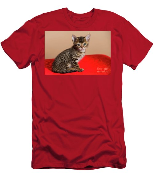 Bengal Kitten - 3 Men's T-Shirt (Athletic Fit)