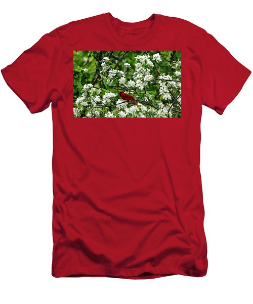 Bird And Blossoms Men's T-Shirt (Athletic Fit)