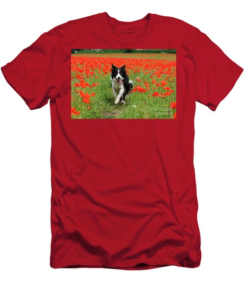 Border Collie In Poppy Field Men's T-Shirt (Athletic Fit)