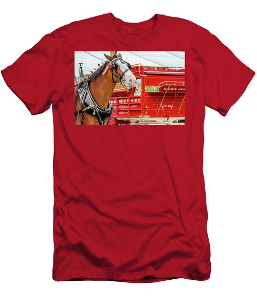 Budweiser Clydesdale In Full Dress Men's T-Shirt (Athletic Fit)