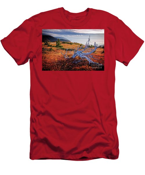 Cape Breton Highlands Men's T-Shirt (Athletic Fit)