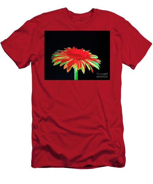 Christmas Daisy Men's T-Shirt (Athletic Fit)