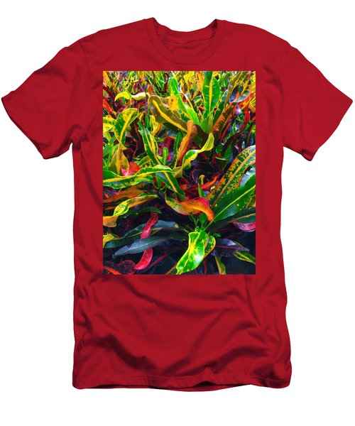 Colorful Crotons Men's T-Shirt (Slim Fit) by Kay Gilley