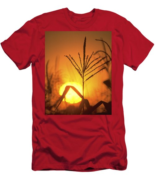 Cornfield Sunset Men's T-Shirt (Athletic Fit)