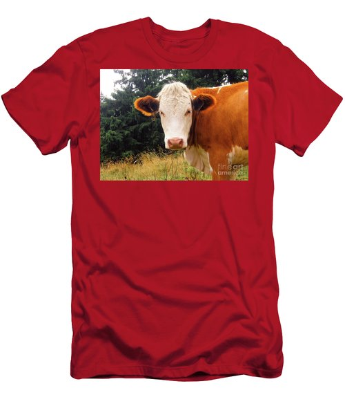 Men's T-Shirt (Slim Fit) featuring the photograph Cow In Pasture by MGL Meiklejohn Graphics Licensing