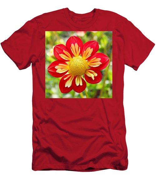 Dainty Dahlia Men's T-Shirt (Athletic Fit)