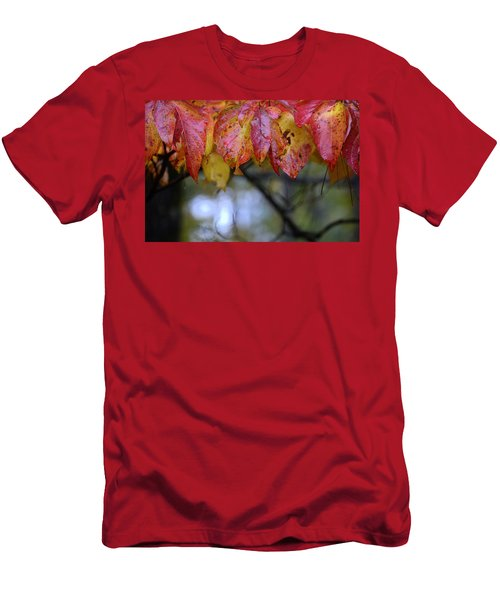 Dogwood 1 Men's T-Shirt (Athletic Fit)