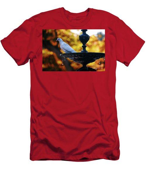 Men's T-Shirt (Athletic Fit) featuring the photograph Dove On Fountain Genovese Park Cadiz Spain by Pablo Avanzini