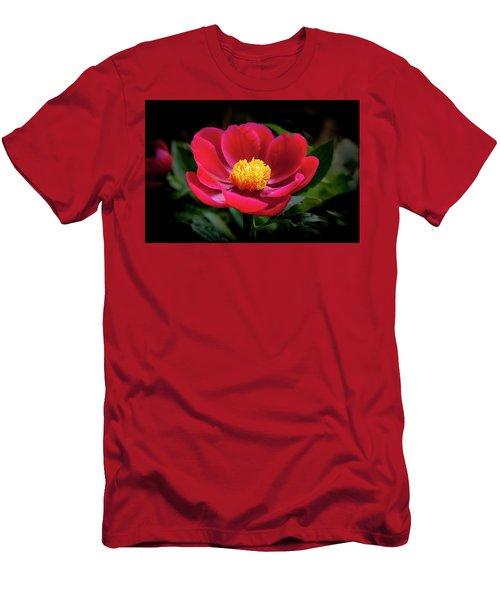 Men's T-Shirt (Athletic Fit) featuring the photograph Evening Peony by Charles Harden