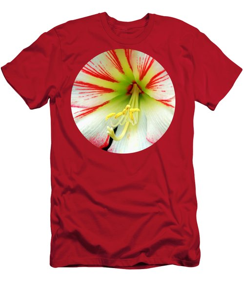 Fairy Tale Amaryllis Men's T-Shirt (Athletic Fit)