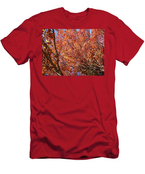 Fall In The Blue Ridge Mountains Men's T-Shirt (Athletic Fit)