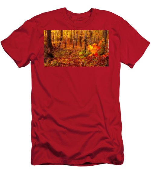 Fall Sugar Bush Men's T-Shirt (Athletic Fit)