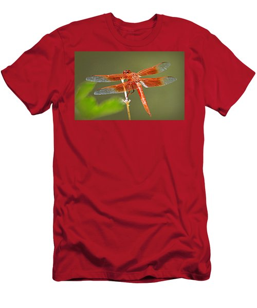 Flame Skimmer Men's T-Shirt (Athletic Fit)