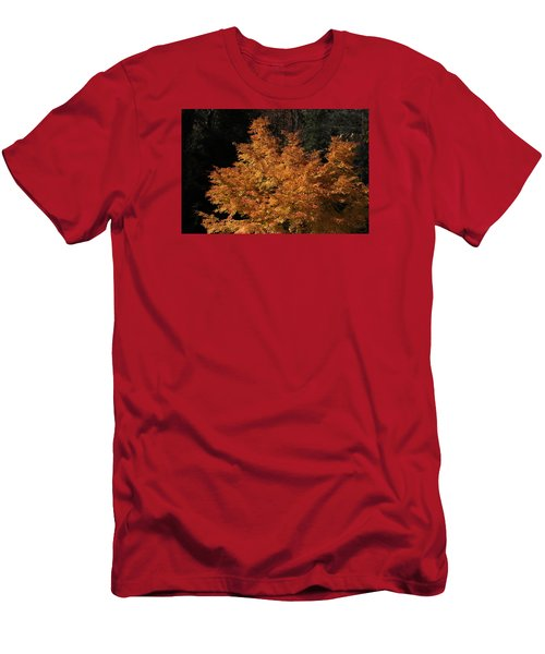 Flaming Tree Brush Men's T-Shirt (Slim Fit) by Deborah  Crew-Johnson