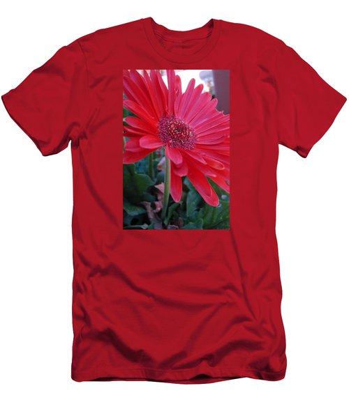 Flora Men's T-Shirt (Athletic Fit)