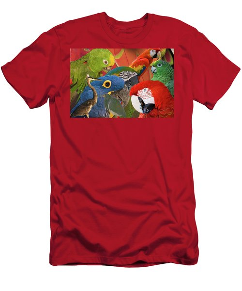 Florida Birds Men's T-Shirt (Athletic Fit)