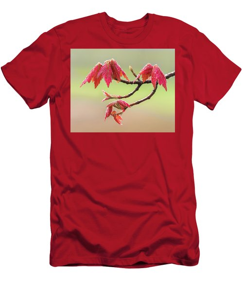Frosty Maple Leaves Men's T-Shirt (Athletic Fit)