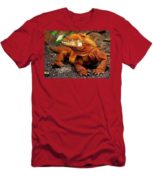 Galapagos Iguana Men's T-Shirt (Slim Fit) by Rod Jellison