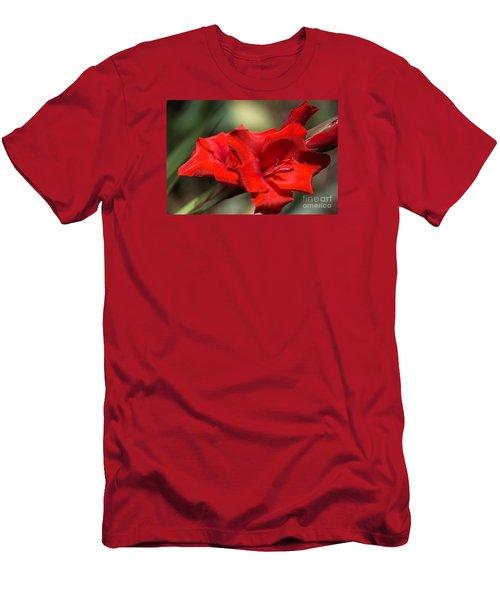 Gladioli Manhattan Variety  Men's T-Shirt (Athletic Fit)