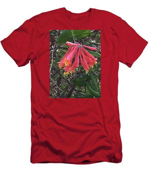 Men's T-Shirt (Slim Fit) featuring the photograph Honeysuckle by Kay Gilley