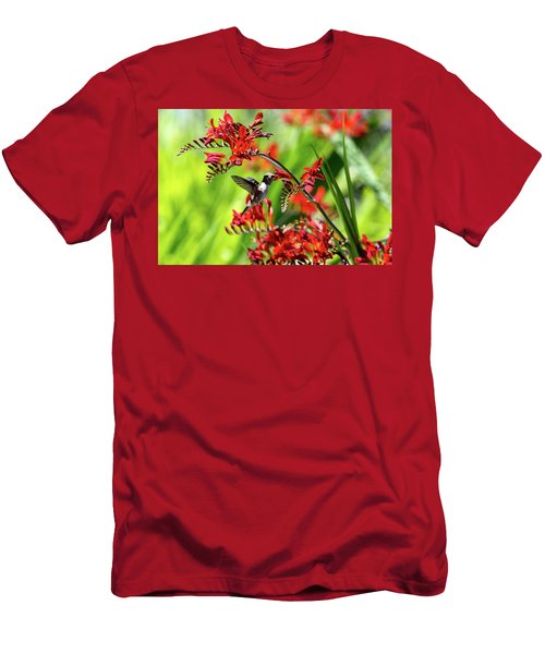 Hummingbird Getting Nectar From Flower Men's T-Shirt (Athletic Fit)