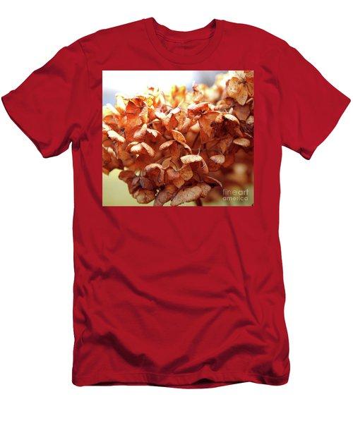 Hydrangea In Sunlight Men's T-Shirt (Athletic Fit)