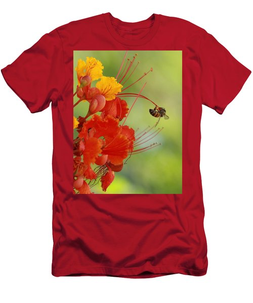 Just Hanging Around Men's T-Shirt (Athletic Fit)