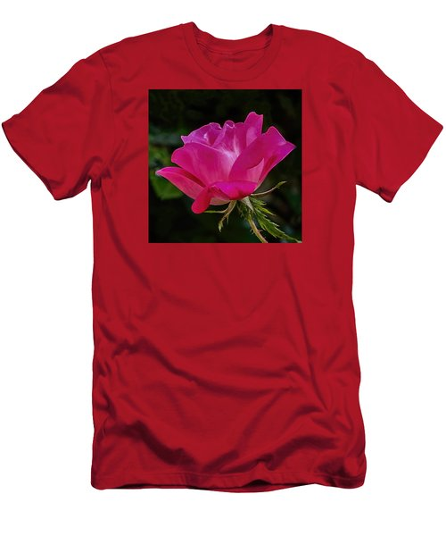 Knock-out Rose Men's T-Shirt (Slim Fit) by Susi Stroud