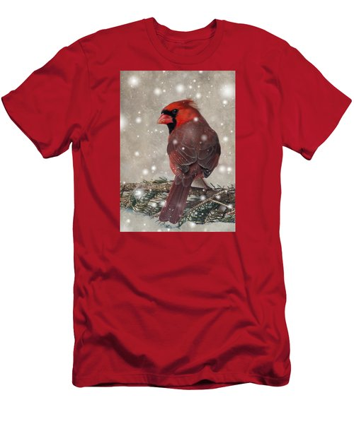 Male Cardinal In Snow #1 Men's T-Shirt (Slim Fit) by Patti Deters