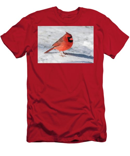Male Cardinal In Winter Men's T-Shirt (Slim Fit) by Kenneth Cole