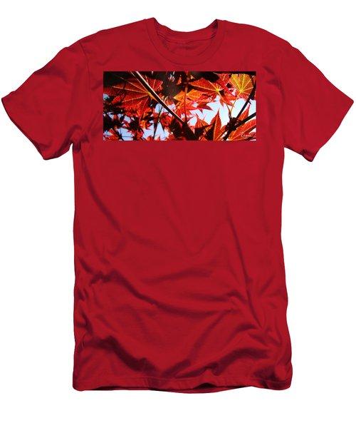 Maple Fire Men's T-Shirt (Athletic Fit)