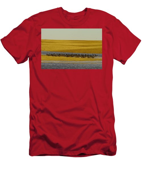 Migrating Geese Men's T-Shirt (Athletic Fit)