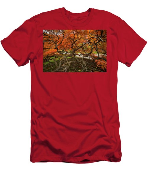 Mount Auburn Cemetery Beautiful Japanese Maple Tree Orange Autumn Colors Branches Men's T-Shirt (Athletic Fit)