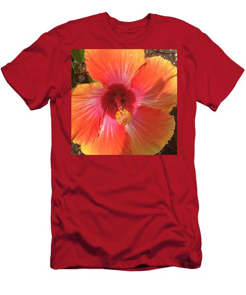 Multi-colored Beauty Men's T-Shirt (Athletic Fit)