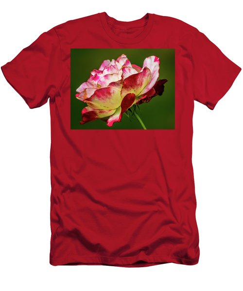 Multi-colored Rose Men's T-Shirt (Athletic Fit)