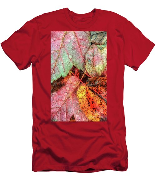 Overnight Rain Leaves Men's T-Shirt (Slim Fit) by Todd Breitling