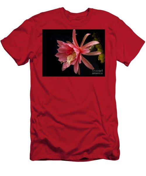 Pink Orchid Cactus Flower Men's T-Shirt (Slim Fit) by Inge Riis McDonald