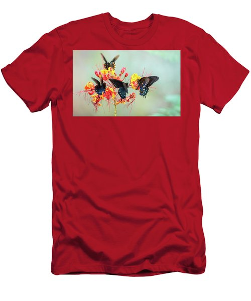 Men's T-Shirt (Athletic Fit) featuring the photograph Pipevine Swallowtail Butterflies  by Saija Lehtonen