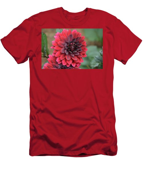 Pretty Blooming Red Dahlia Flower Blossom Men's T-Shirt (Athletic Fit)