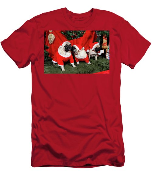 Pugs Dressed As Father-christmas Men's T-Shirt (Athletic Fit)