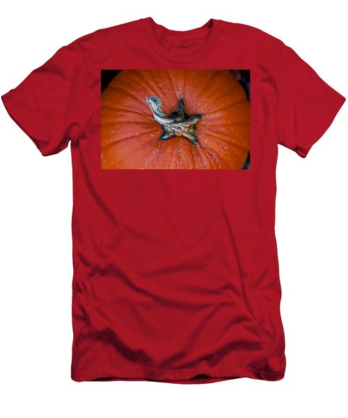 Pumpkin Stalk Men's T-Shirt (Athletic Fit)